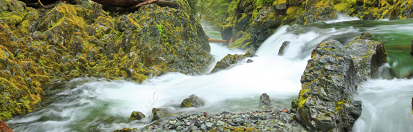 The Pew Research Center consistently shows that clean water is what matters most to Oregonians. Photo by Carla Hervert, RN