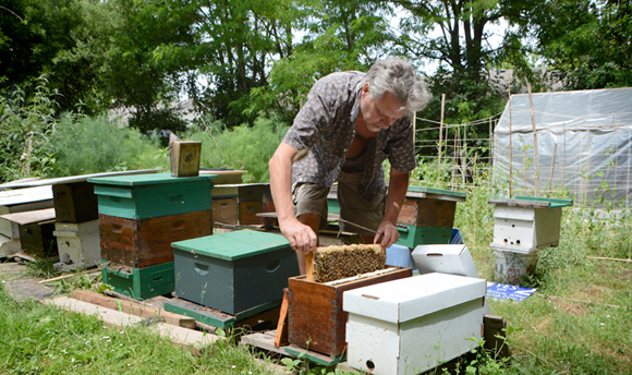 Philip Smith, Eugene-area beekeeper and owner of Blessed Bee, faces the prospect of going out of business in 2014 due to significant losses in his hives over the winter.