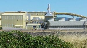 Seneca Sustainable Energy biomass plant - Photo by Lisa Arkin Aug 6, 2014