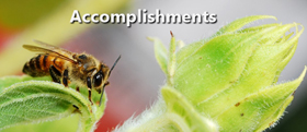 Accomplishments of the Save Oregon's Bees campaign