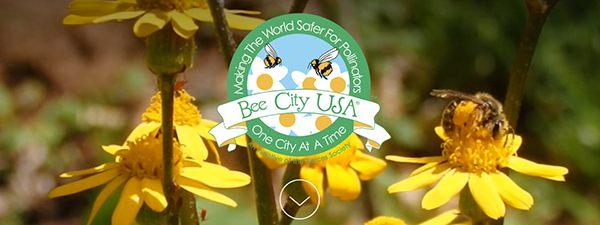 BeeCityUSA-website-Homepage_700px