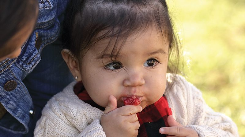 Baby_eating_strawberry_LG-ADJ-CROP_800x600