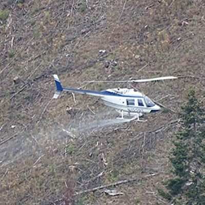 FrancesE_HelicopterSpraying_SQ_400px