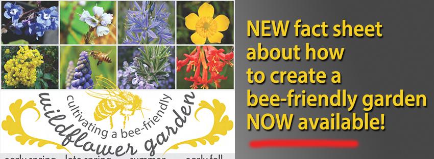 BT_HomePage_Bee-FriendlyGardens_May2016