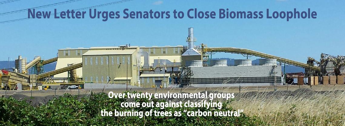 bt_homepage_biomassletter_oct2016