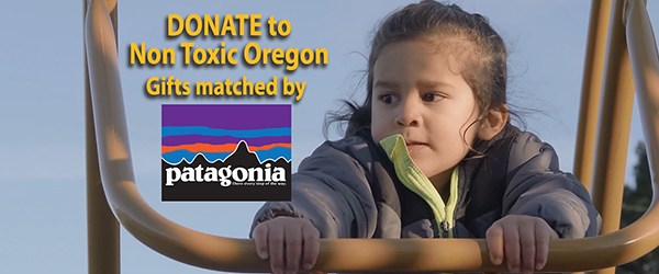 HomePage_ChildClimbing_w_text_PatagoniaGiftMatch_BEST