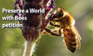 preserve-a-world-with-bees_petition